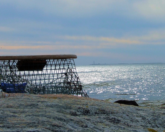 Beached lobster trap